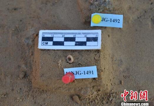 """""""大泥河湾""""考古发现一万年前古人类用鸵鸟蛋皮制作装饰品"""