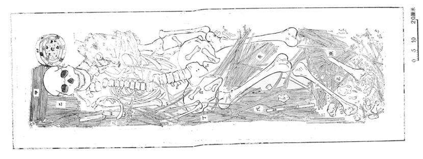 竹简手绘图-中国古代丧葬礼制青年学者研讨会纪要图片